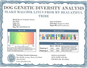 Donday-UC-Davis-Genetic-Diversity-report